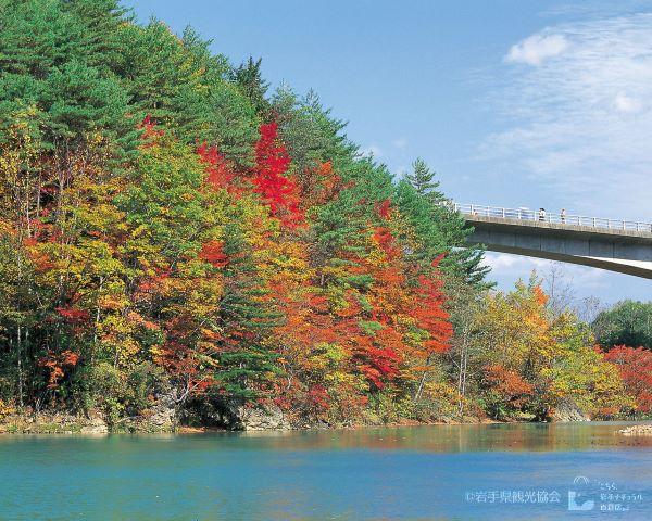 Mori no Ohashi Bridge Iwate Japan