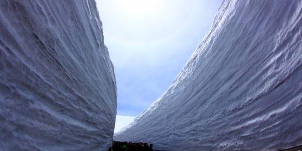 Snow-Corridor-Tateyama-Kurobe-Alpine-Route