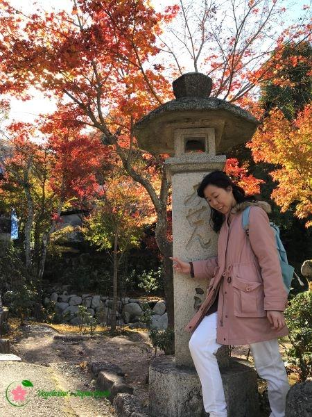 Momijidani Park Miyajima Japan