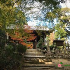 Mt-Shosha-Engyoji-Temple-Entrance