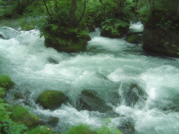 Flow Of Ashura Oirase Gorge Aomori Japan