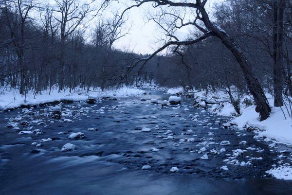 Shimeikei Stream Oirase Gorge Aomori Japan