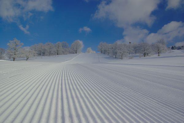 Oirase Gorge Onsen Ski, Snowboard & Spa Resort Aomori Japan