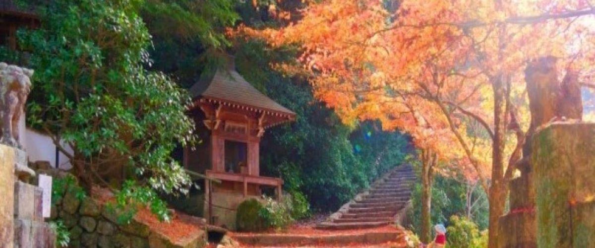 Secret Places In Japan
