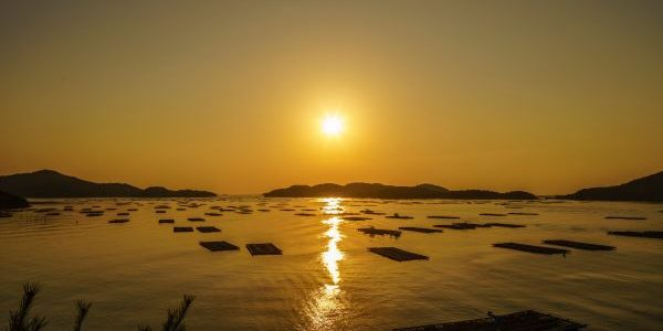 Mushiake-Setonoakebono-Setouchi-Japan