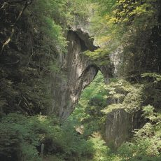 Rashomon-Gate-Niimi-Okayama-Japan