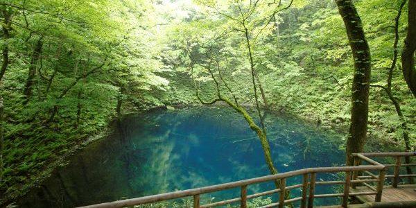 Aoike-Pond-Shrakami-Sanchi-Japan