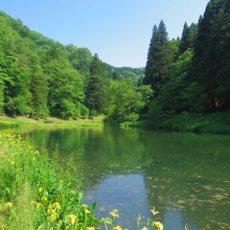 Gyokusenko-Yuwaku-Onsen-Kanazawa-Ishikawa-Japan