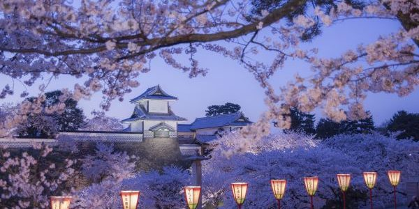 Kanazawa-Castle-Cherry-Blossom-Ishikawa-Japan