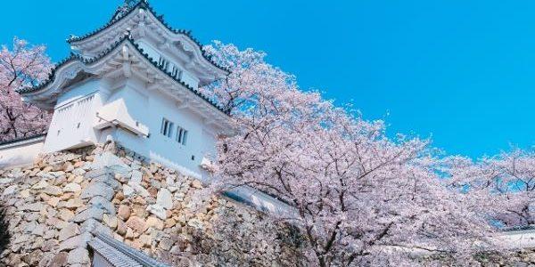 Tatsuno-Castle-Tatsuno-Hyogo-Japan-1