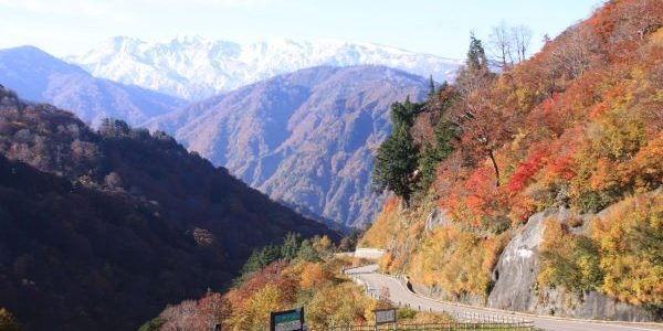 Tsuga-no-Mokudai-Hakusan-Shirakawago-White-Road-Ishikawa-Japan