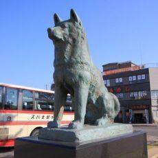 Hachiko-Statue-Odate-Akita-Japan