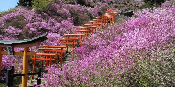 Shshizakiinari-Shrine-Miyazu-Kyoto-Japan-